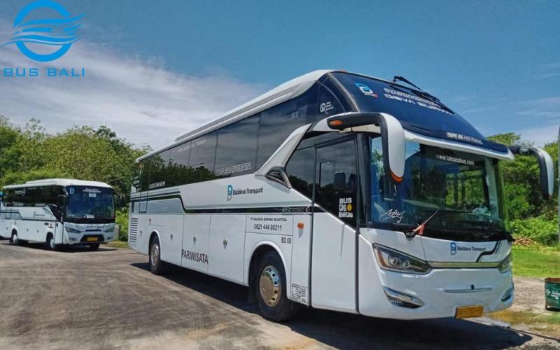 Fakta Baru Tour di Bali dengan Bus Ternyata Lebih Murah